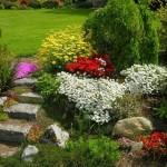 Нескучный сад – раскрасьте свой сад в цвета радуги!