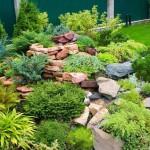 Каменистые горки в саду