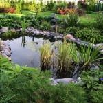 Как вырыть пруд, чтобы он стал элементом дизайна ландшафта