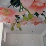 Преимущества натяжных потолков клипсо
